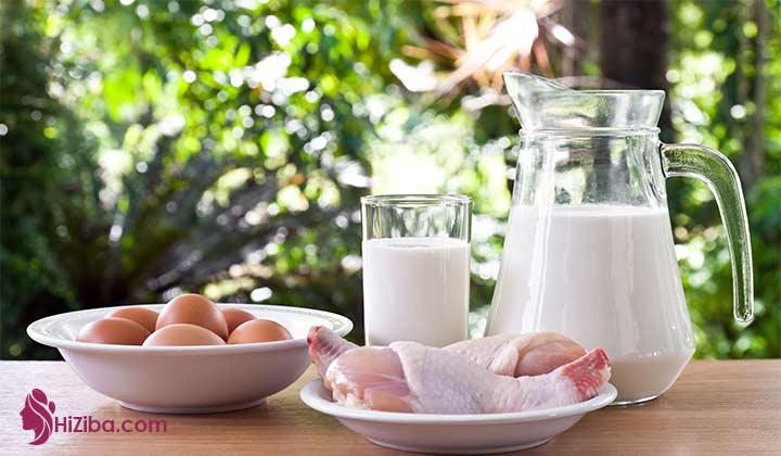 غذاهای سرشار از پروتئین