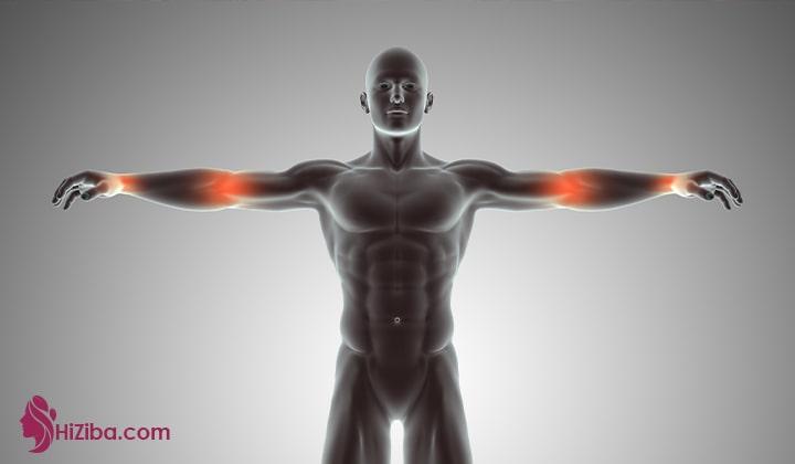 نقش پروتئین در بدن و بهترین مواد غذایی پروتئین دار