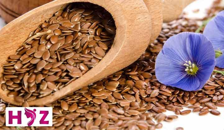 بهترین دانه ها برای لاغری کدام دانهها هستند؟