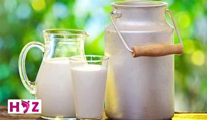 رژیم لاغری شیر چیست؟