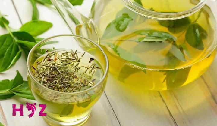 تهیه چای سبز و زنجبیل